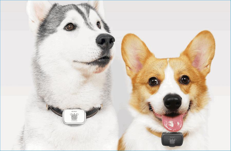 Xiaomi PetВit Smart Pet Tracker